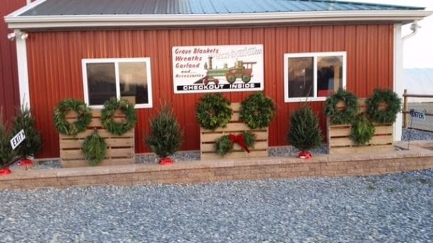 red building displaying wreaths and mini trees