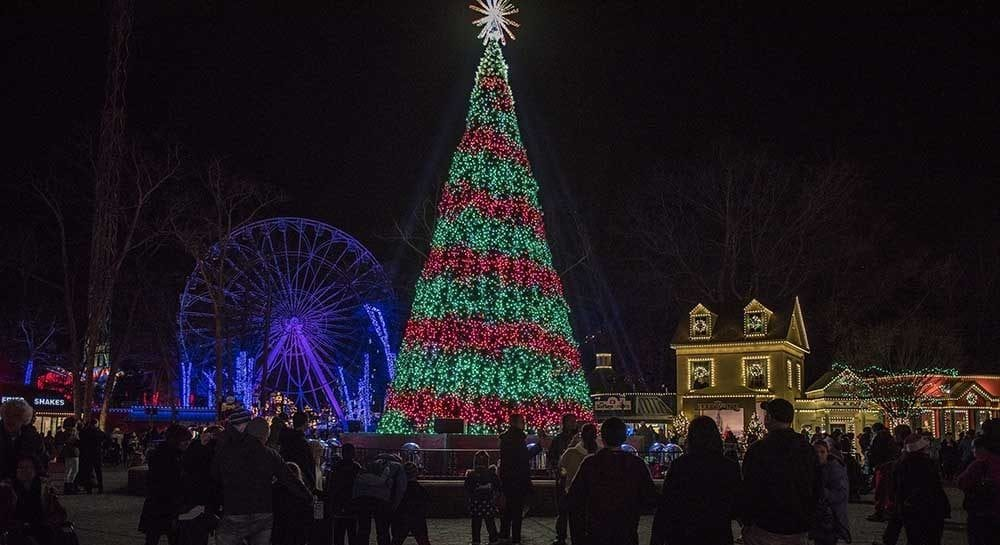 Holiday Light Displays in New Jersey