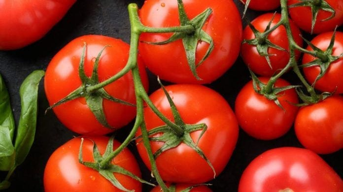 tomatoes, health benefits, eating tomatoes