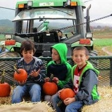fall festivals, new jersey farms