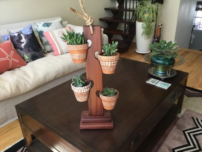 Indoor Gardening Tips for Winter Home Decor