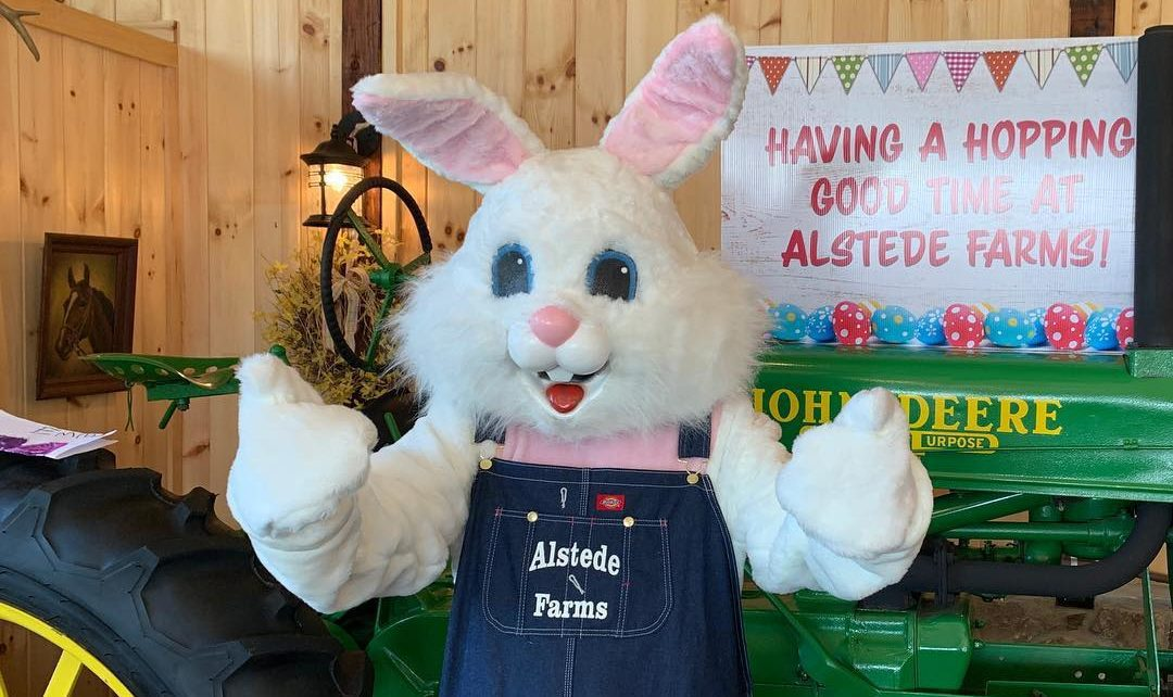 easter bunny in overalls standing in front of tractor
